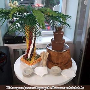 Шоколадный фонтан и фруктовая пальма Алматы