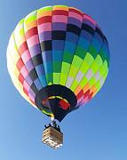 Воздушные шары в аренду для всей семьи Алматы