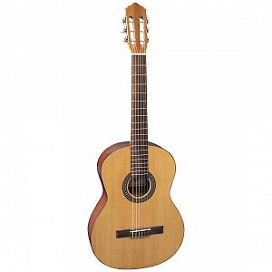 Акустическая гитара напрокат Алматы